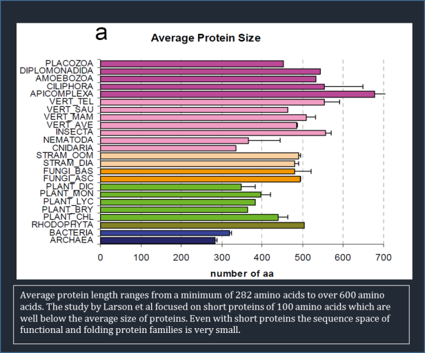 protein-size-average