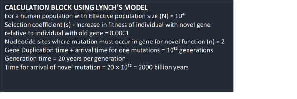 calc-block-lynch-model