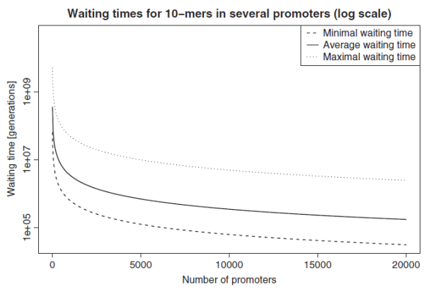 waiting-time-in-all-regions-of-dna