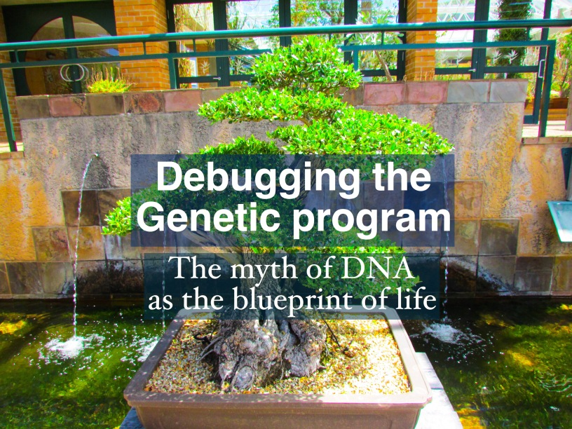 Debugging the genetic program the myth of dna as the blueprint of debugging the genetic program the myth of dna as the blueprint of life malvernweather Images